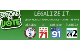 November Elections: The State of Legalization in the U.S. 2014