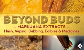 BOOK REVIEW: Beyond Buds, by Ed Rosenthal With David Downs