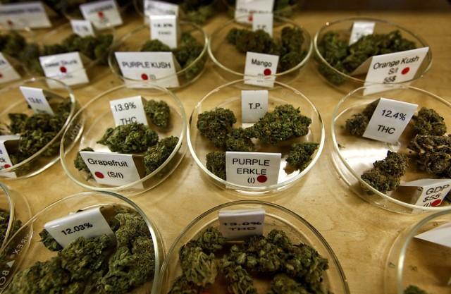 reasons why to try medical marijuana