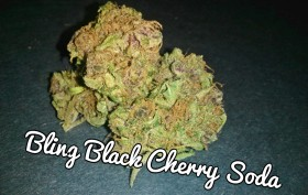 My Favorite Strains: Bling Black Cherry Soda