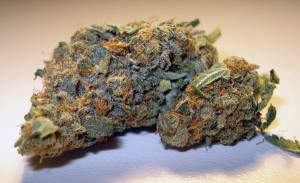 My Favorite Strains for an Active Lifestyle, Source: http://www.belowthelion.co.za/wp-content/uploads/trainwreck.jpg