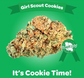 Girl Scouts of America Go After the 'Girl Scout Cookies' Strain for Infringement