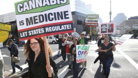 Medical Marijuana Bill Gains Momentum in Senate