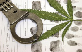 Back-Fire: How Getting Busted Made Me a Drug-Policy Activist