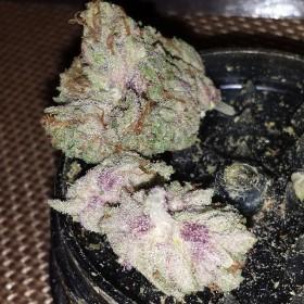 Instafire: Super Frosty Pink 2.0