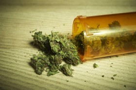 Medical Marijuana: The Myths and Realities