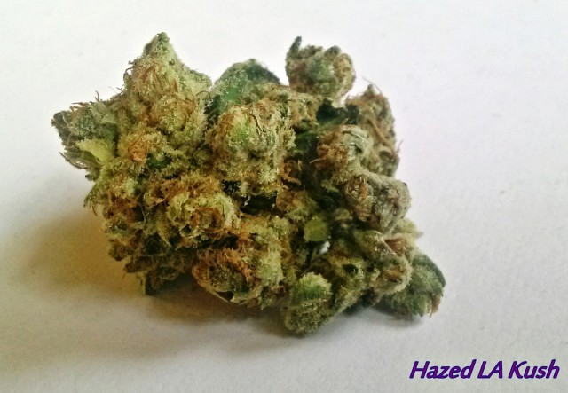 My Favorite Strains: Hazed LA Kush, Source: Original Photography for Weedist.com by Phe Harpha