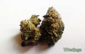 My Favorite Strains: Wreckage