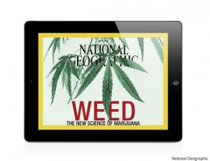 National Geographic Dedicates Cover to Cannabis, Source: http://chicagotimespost.com/wp-content/uploads/2015/05/o-IPAD-WEED-COVER-5701.jpg