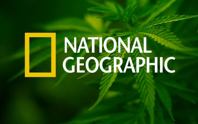 National Geographic Dedicates Cover to Cannabis, Source: http://my420tours.com/wp-content/uploads/2014/04/blog1-1080x675.jpg