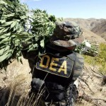New DEA Chief Claims He Will Not Focus on Marijuana | Source: http://www.hightimes.com/read/new-dea-chief-claims-he-will-not-focus-marijuana