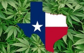 Texas Legislature Kills Marijuana Bills
