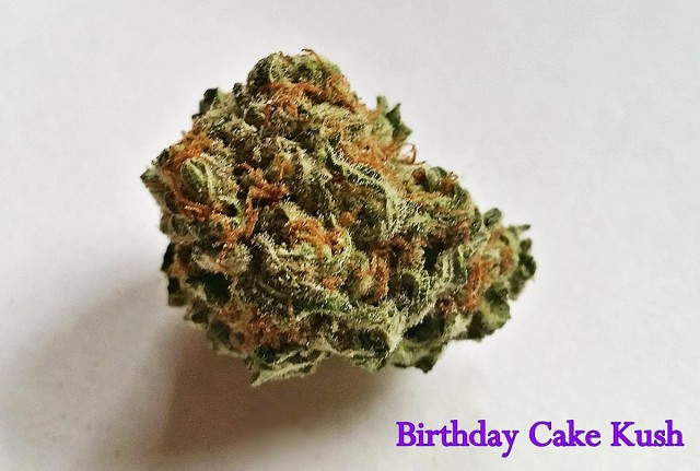 My Favorite Strains: Birthday Cake Kush, Source: Original photography by Phe Harpha  for Weedist.com