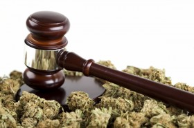National Cannabis Bar Association Unites Attorneys