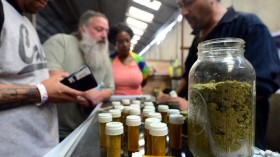 Senate Committee Approves Protections for State Medical Marijuana Programs